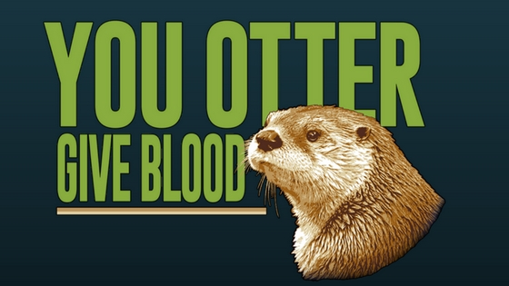 you otter give blood